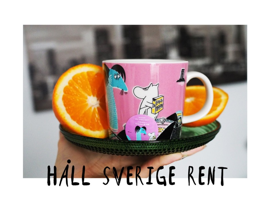 pidä ruotsi siistinä