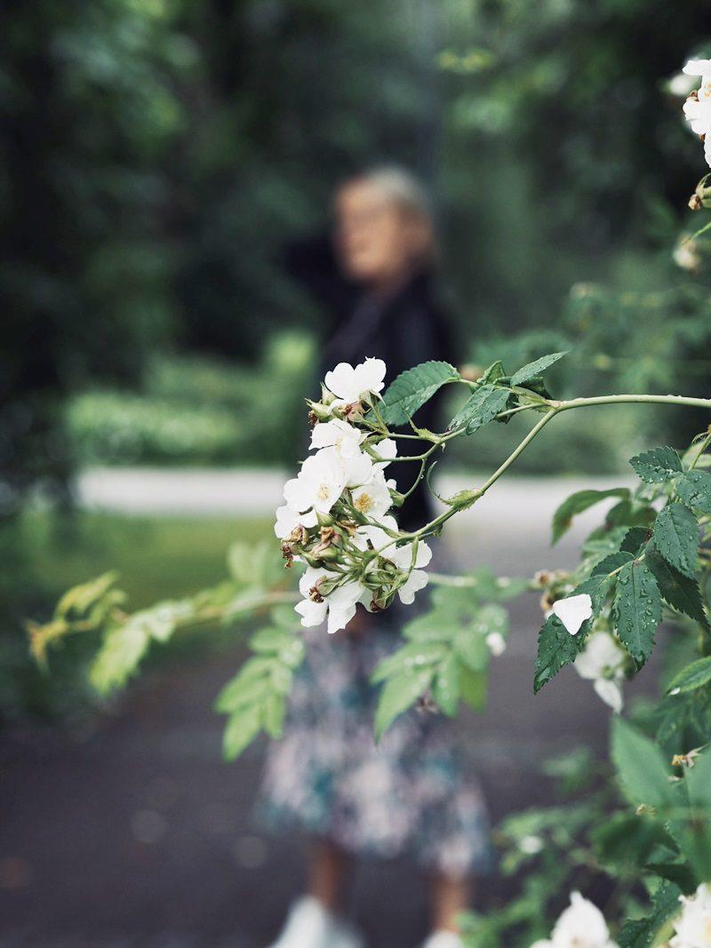 arboretum tampere