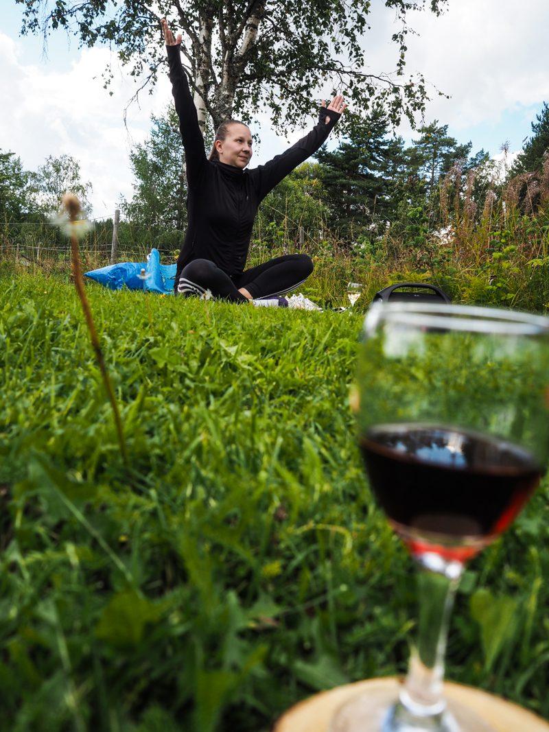 viinijooga teisko